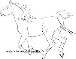 Coloring Pages Wild Horse Coloring Pages Horses Page Mustang Wild