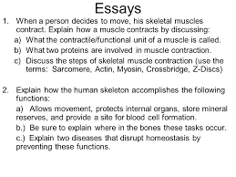 human body systems muscular system skeletal system circulatory  22 essays