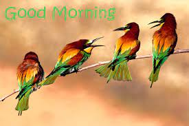 Good Morning Wishes With Birds Pictures ...