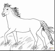 Small Picture wonderful baby horse coloring pages for kids with printable horse
