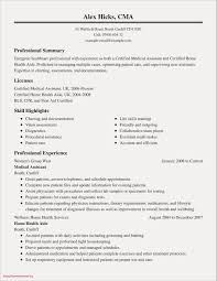 Example Of A Professional Summary On A Resume Free Resume Examples