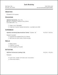 Successful Resume Template Blaisewashere Com