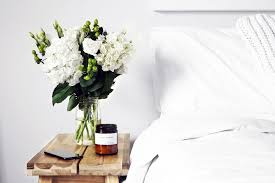 5 Pflanzen Für Dein Schlafzimmer Healthy Rockstar