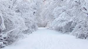 Image Result For Winter Scenery Wallpaper For Mac Winter