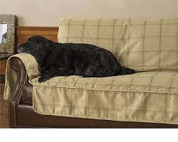 sofa pet covers. Dog Couch Protector Sofa Pet Covers I