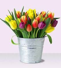15 mix tulip flowers are the best approach to send your feeling to your nearest