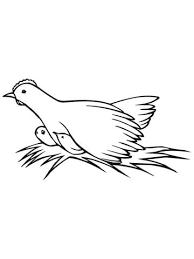 Kip Op Nest Met Kuikens Kleurplaat Gratis Kleurplaten Printen