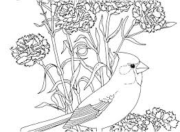 Coloring Pages Of Birds In Trees State Tree Coloring Page Bird