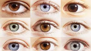 How Is Your Eye Color Determined And Everything It Tells