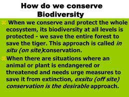 essay biodiversity conservation environment << custom paper essay biodiversity conservation environment