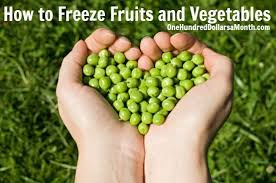 How To Freeze Fruits And Vegetables Home Tips Fruit