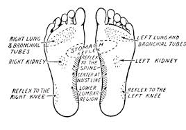 Foot History Chart Foot Reflexology Chart Clipart Images Gallery For Free