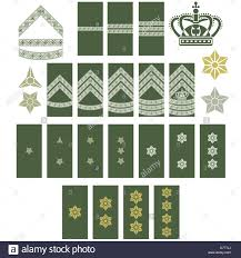 Army Ranks Chart 10 Army Ranks Chart Proposal Resume