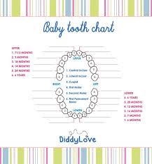 Teeth Growth Chart Baby Book Print Outs Growth Chart In Any Case If You Think