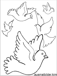 Roodborstje Kleurplaat Vogel Malvorlagen 28 Kleurplatenlcom