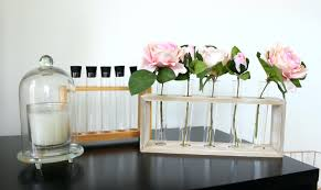 test tube decor home a style collector haul vase decorations