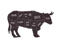 Cow Butcher Chart Primitive Butcher Shop Beef Cuts Chart T Shirt