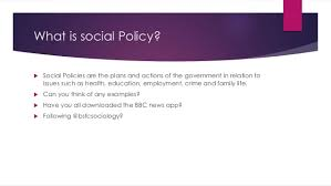 social policy essay feminism and social policy gamitio comfeminism and social policy feminism and social policy gamitio comfeminism and social policy