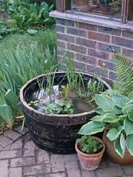 barrel garden. Garden-barrel Barrel Garden