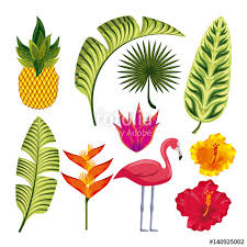 pineapple and flamingo background. tropical flowers, leaves, flamingo and pineapple over white background. colorful design. vector background
