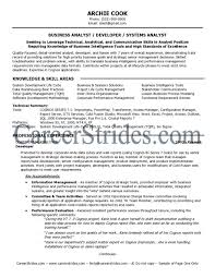 business systems analyst resume samples - It Business Analyst Resume Sample