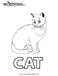 Spell Cat Coloring Page Printable Coloring Pages Pinterest Dog And