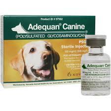 Adequan Canine 5 Ml