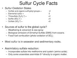 Ppt Sulfur Cycle Facts Powerpoint Presentation Id 6660236