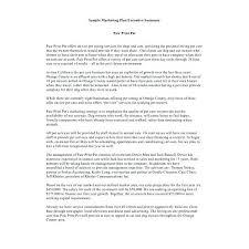 Resume Executive Summary Example Summary Ideas For Resume Summary