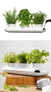 50 unique pots planters you can