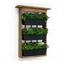 Indoor Kitchen Herb Garden Kit Beautiful Indoor Kitchen Herb Garden Kit For Decoration Ideas With