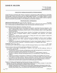 Summary Examples For Resume Gorgeous 48 Executive Summary Example Resume Free Resume Templates