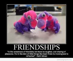 Demotivational Quotes Amazing Friendship Demotivational Quotes