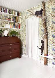 giant tangled cat tree