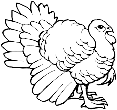 Small Picture Australian Brush Turkey coloring page Animals Town Animal