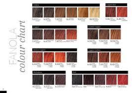 Fanola Colour Chart Manuale Tecnico Fanola By Profumeria Frascogna Issuu