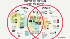 Taiga Temperature Chart Compare And Contrast Taiga And Tundra By Navjot Khaira On Prezi