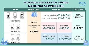Ns Ippt Chart How Much Of Your Ns Allowance Can You Save During National