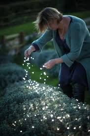 amazing garden lighting flower. Solar Flower Garden Lights @25 Flowers That Make Awesome Hanging Baskets Amazing Lighting D