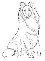 Puppy Duitse Herder Kleurplaat Ausmalbild Shetland Sheepdog Oder