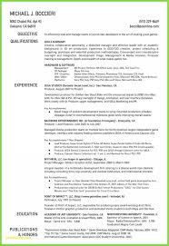 Resume Templates For Visual Artists Beautiful Collection 19