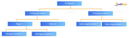 Sap Sd Organizational Structure Flow Chart Sap Pp Tutorial Learn Sap Pp From Experts Intellipaat