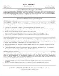 Sample Project Manager Resume Objective Resume Layout Com