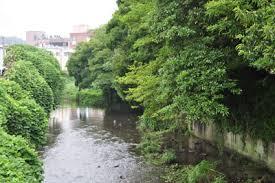 「鎌倉女学院 滑川」の画像検索結果