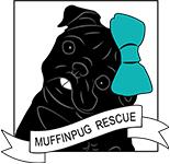 <b>China Pugs</b> – MuffinPug Rescue