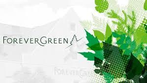 Afbeeldingsresultaat voor forevergreen logo