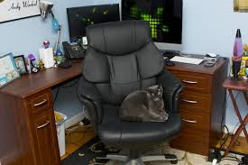 comfiest office chair. Comfiest Office Chair \u2013 Ideas To Decorate Desk B
