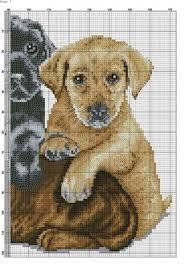 Фотографии на стене сообщества | Вышивка | Cross Stitch, Cross ...