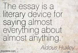 essay quotes good essay quotes
