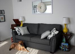 Decorating With Dark Grey Sofa Living Room Minimalist Apartment Living Room With Dark Grey Sofa